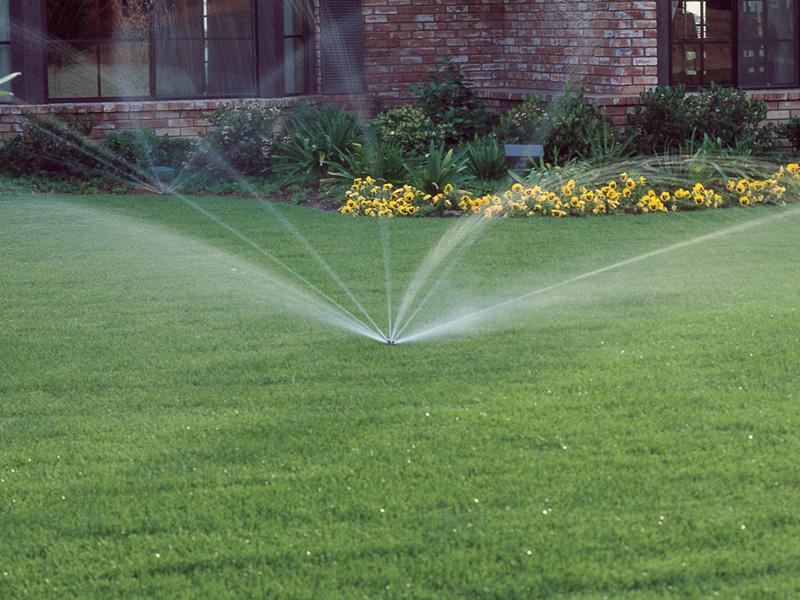 foto-irrigazione